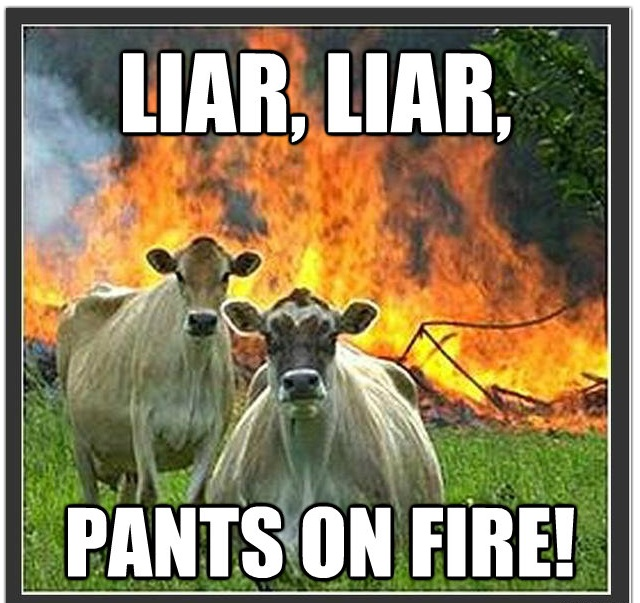 fire cow meme