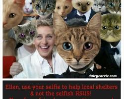 Ellen HSUS Donation